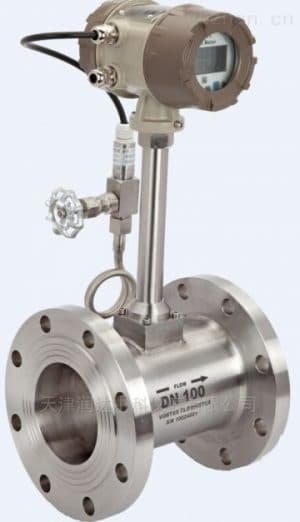 Steam flow meter Vortex Flow Meters